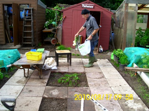 andy at allotment