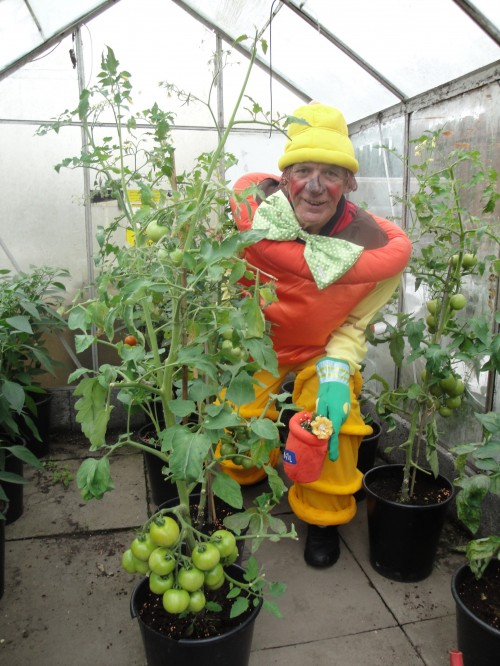 Andy dressed up at allotment